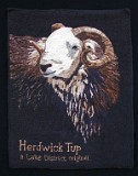 Marian-Hall-Herdwick-Tup-Front